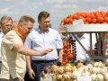 Янукович посидел за рулем трактора