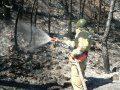На открытой территории Севастополя за неделю произошло 34 пожара